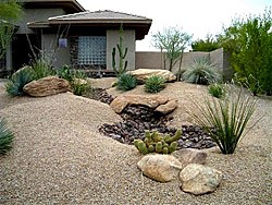Xeriscaping The Official Site Of Rio Rancho Nm
