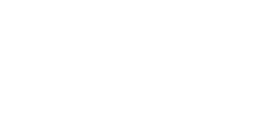City of Vision