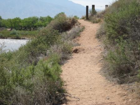 photo of trail